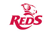Queensland Reds Rugby